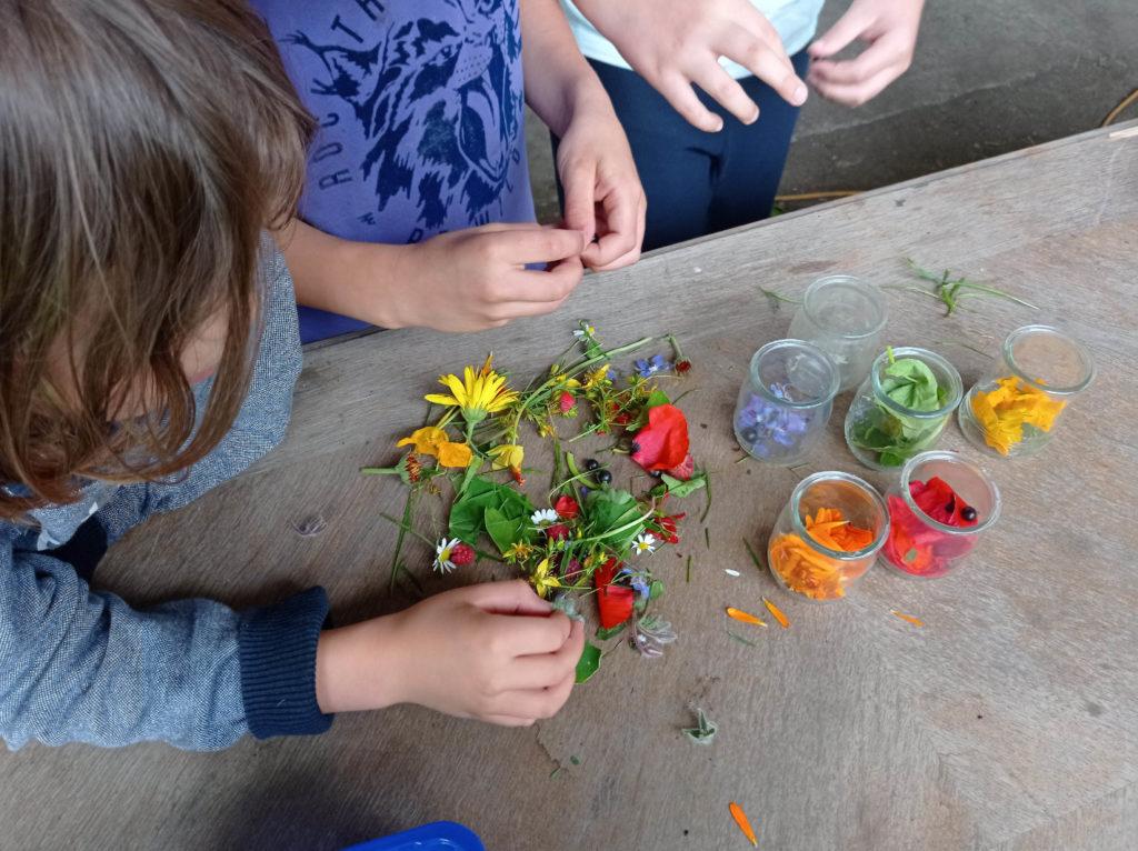 Création des couleurs à partir de plantes du jardin